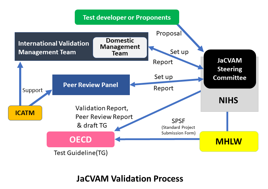JaCVAM Validation Process